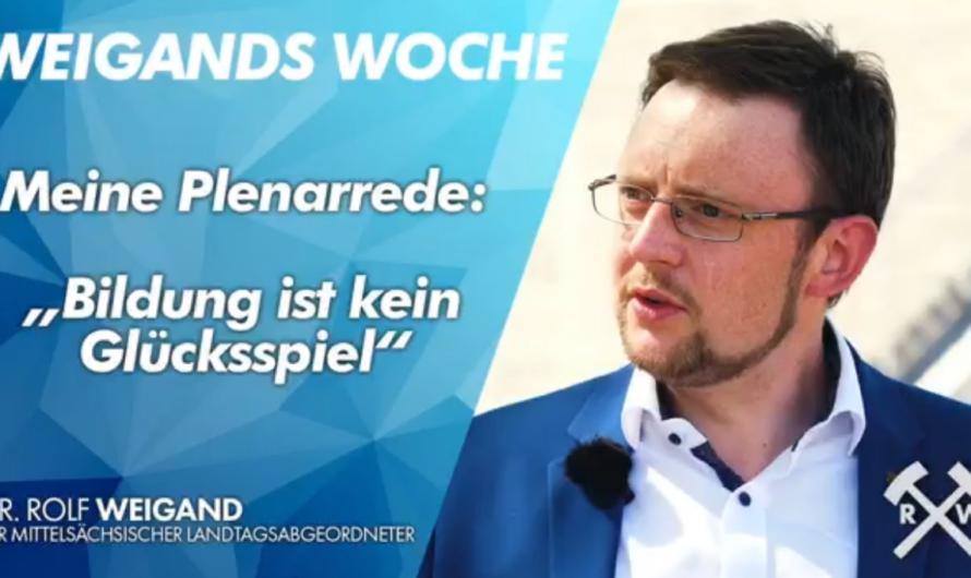 """Weigands Woche – Meine Plenarrede: """"Bildung ist kein Glücksspiel!"""""""