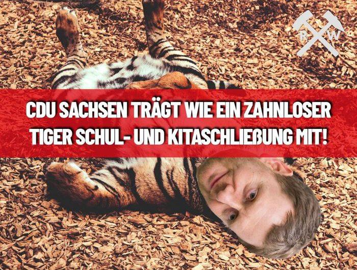CDU in Sachsen trägt wie ein zahnloser Tiger Schul- und Kitaschließung mit!